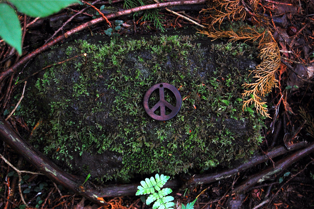 Aokigahara, peace sign