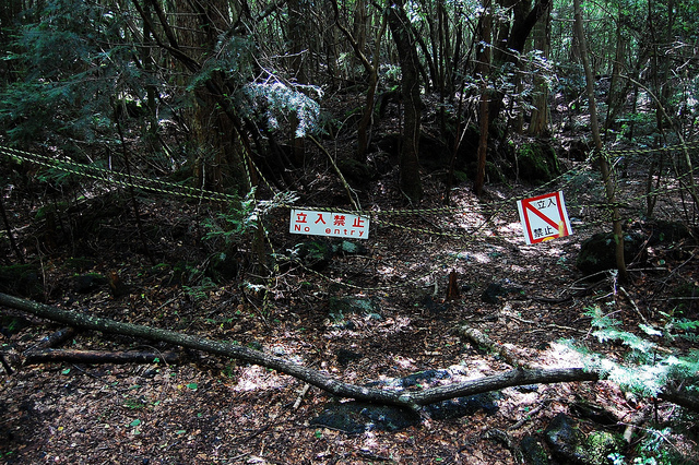 Aokigahara- warning signs everywere